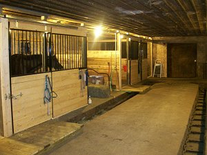 finished horse stalls